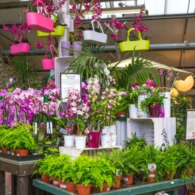 Millbrook Garden Centre Gravesend Millbrook Garden Centre