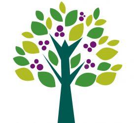 Plant a Tree or Shrub