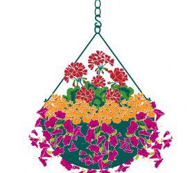Plant a Hanging Basket