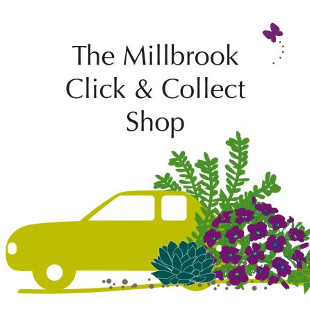 New for 2020: Click and Collect