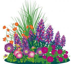 Plant a Sunny Border